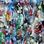 photogragh of plastic bottles